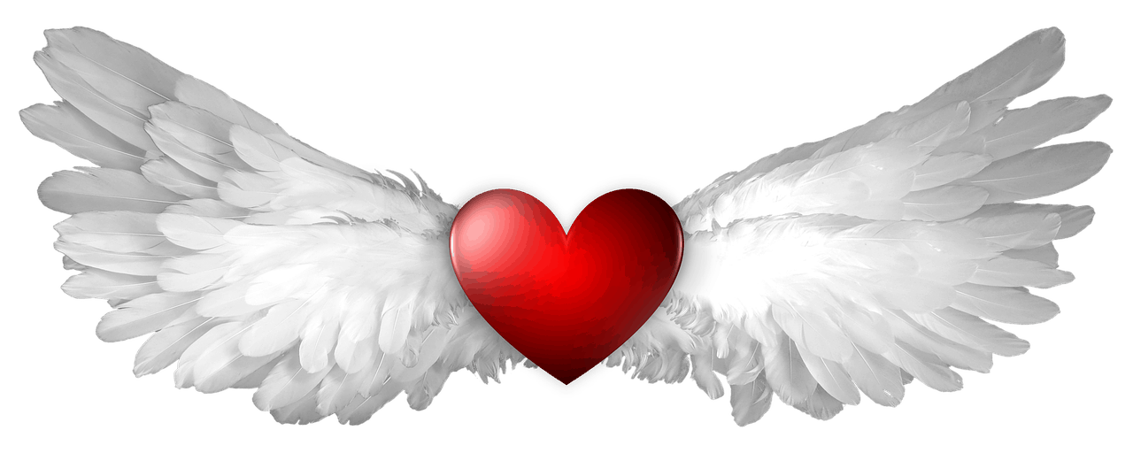 Rotes Herz mit Engelsflügeln aus Federn