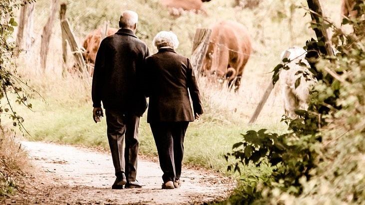 Älteres Paar geht in der Natur spazieren